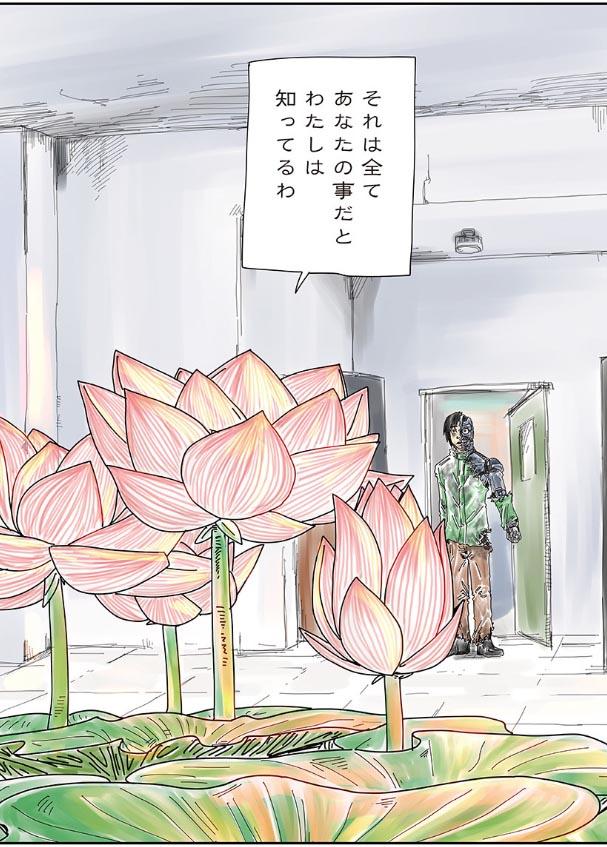 大きく開花した蓮の花