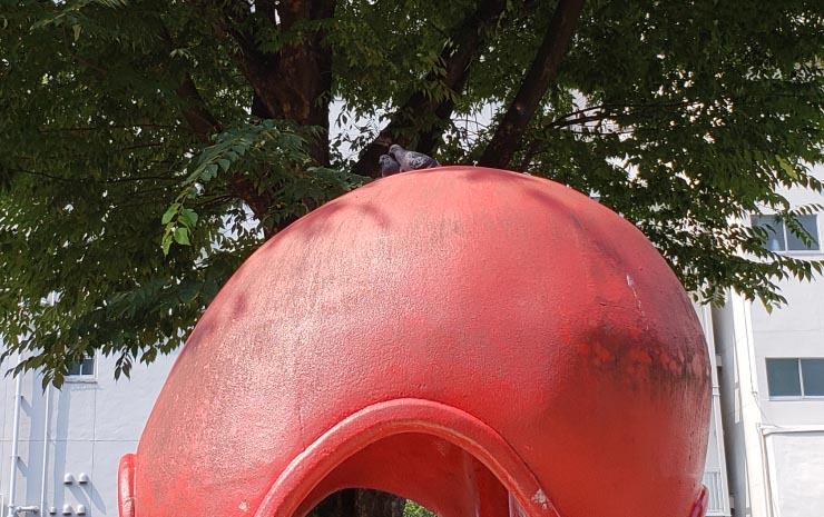 タコ公園とつがいの鳩