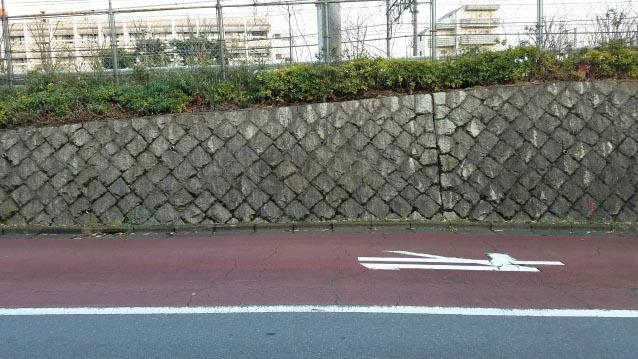 戸山公園界隈-石垣