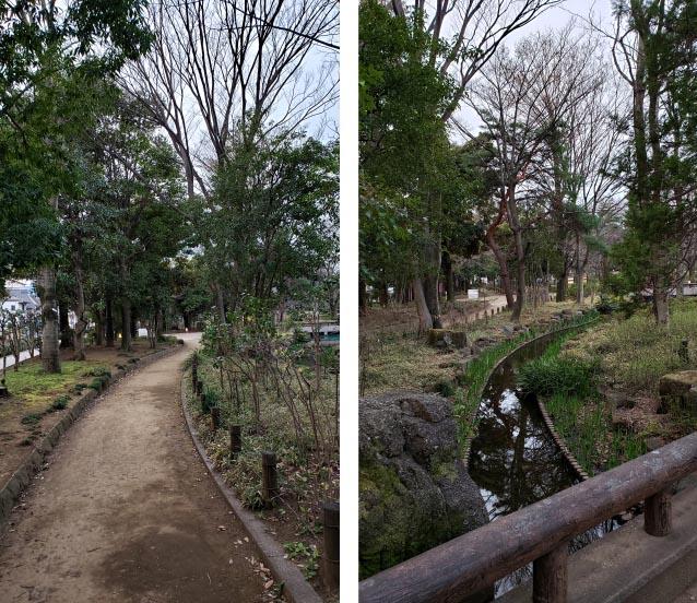 井草森公園-東北口ゲート-左手小道
