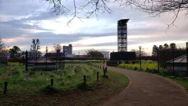 井草森公園-花の丘-Glass Tower