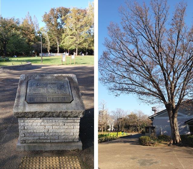 井草森公園-モニュメント花壇周辺-案内板と管理事務所