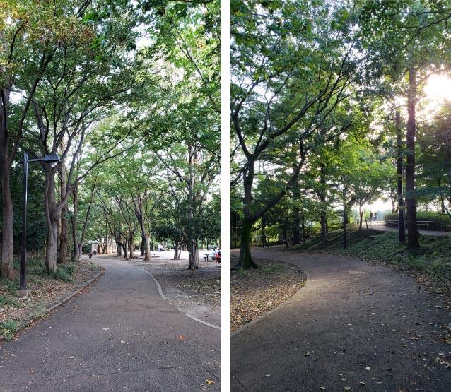 井草森公園-北口ゲート付近