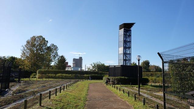 井草森公園-花の丘-Glass Tower-昼下がり