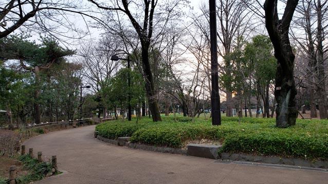 井草森公園-東口ゲート-橋の先の分岐路
