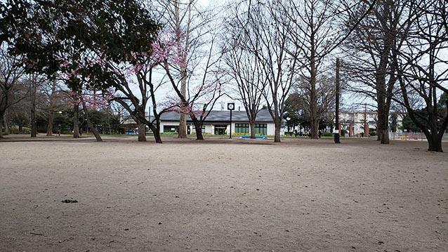 井草森公園-多目的広場-時計