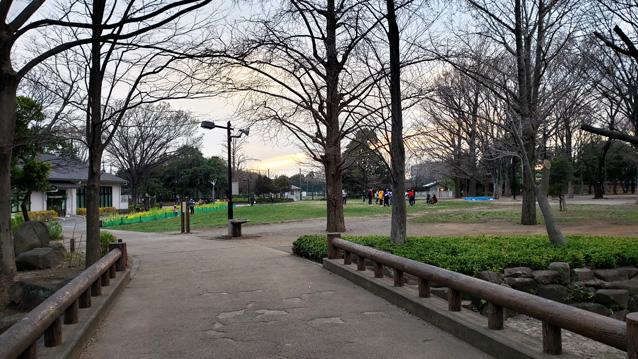 井草森公園-あずまや-池-対岸の橋