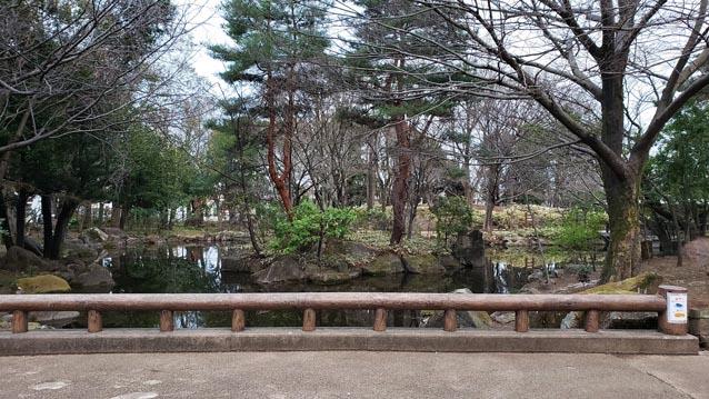 井草森公園-東口ゲート-池-中の島