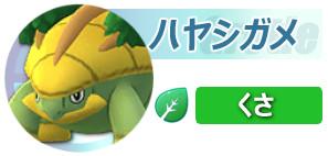 1500-ポケボタン-ハヤシガメ
